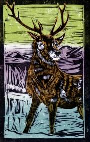Deer - Animal Alphabet | Lino print with digital colour | 200 x 250mm