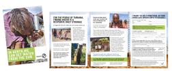 Practical action leaflet