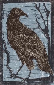 Hawk - Animal Alphabet | Lino print with digital colour | 200 x 250mm