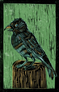 Nightingale - Animal Alphabet | Lino print with digital colour | 200 x 250mm