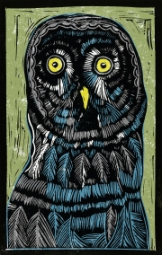 Owl - Animal Alphabet| Lino print with digital colour | 200 x 250mm