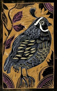 Quail - Animal Alphabet | Lino print with digital colour | 200 x 250mm