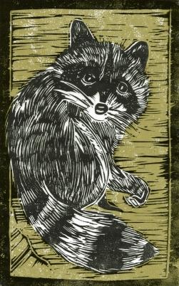 Raccoon - Animal Alphabet | Lino print with digital colour | 200 x 250mm
